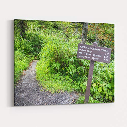 Rosenberry Rooms Canvas Wall Art Prints - The Appalachian Trail The Appalachian Trail As It Approaches Clingmans Dome At Over Ft This Is The Highest Elevation Of The Trail Within The (30 x 24 inches) (Green Grass Pinnacle)