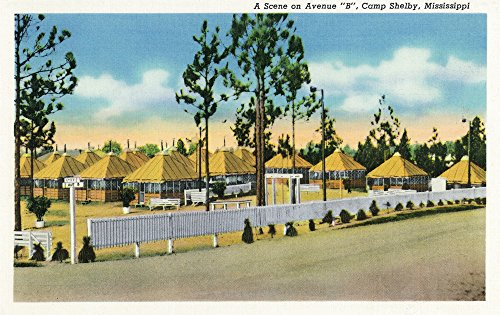 Camp Shelby, Mississippi - View of Army Tents from Avenue B (24x36 SIGNED Print Master Giclee Print w/Certificate of Authenticity - Wall Decor Travel Poster)