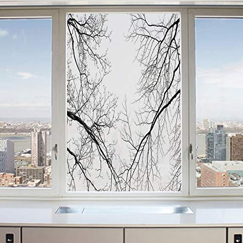 3D Decorative Privacy Window Films,Trees Branches Leafless Spooky Scary Image in a Gloomy Air Sky Scene Image,No-Glue Self Static Cling Glass film for Home Bedroom Bathroom Kitchen Office 17.5x36 Inch -