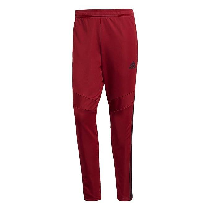 Amazon.com: Adidas Tiro 19 - Pantalones de entrenamiento ...