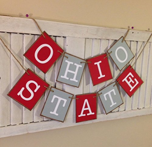 Ohio State Banner Bunting Garland Sign Scarlet and Gray Buckeyes Go Bucks Tailgate Party Must Have Great Photo Prop College Football Basketball Sport's Team
