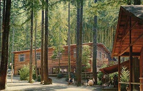 alliance-redwoods-christian-camp-conference-center-camp-meeker-california-original-vintage-postcard