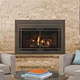 Large Direct Vent Gas Insert w