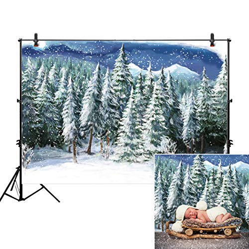 Allenjoy 7x5ft Winter Landscape Backdrop for Studio Photogra
