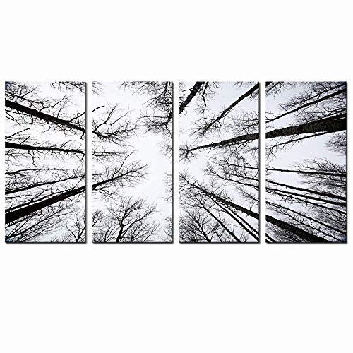 (LevvArts - Black and White Forest Canvas Wall Art Low Angle View Aspen Trees Picture Print on Canvas,San Juan National Forest,4 Panels Framed Artwork for Modern Home Wall Decoration)