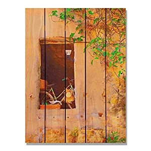 Gizaun Art Summer Bicycle Inside/Outside Wall Art, Full Color on Cedar, 28-Inch by 36-Inch
