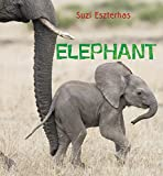 Eye on the Wild: Elephant