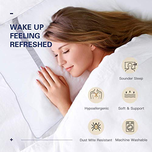 BedStory Pillows for Sleeping Hotel Collection Luxury Pillow 2 Pack Down Alternative Premium Quality Bed Pillows for Back Stomach and Side Sleepers Hypoallergenic Dust-Mite Resistant (Queen II)