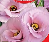 Eustoma / Lisianthus grandiflorum Florida Pink F1 Flower Seeds