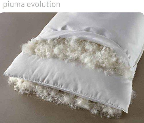 El cojín almohada Evolution exterior, suave plumón. Soporte ...