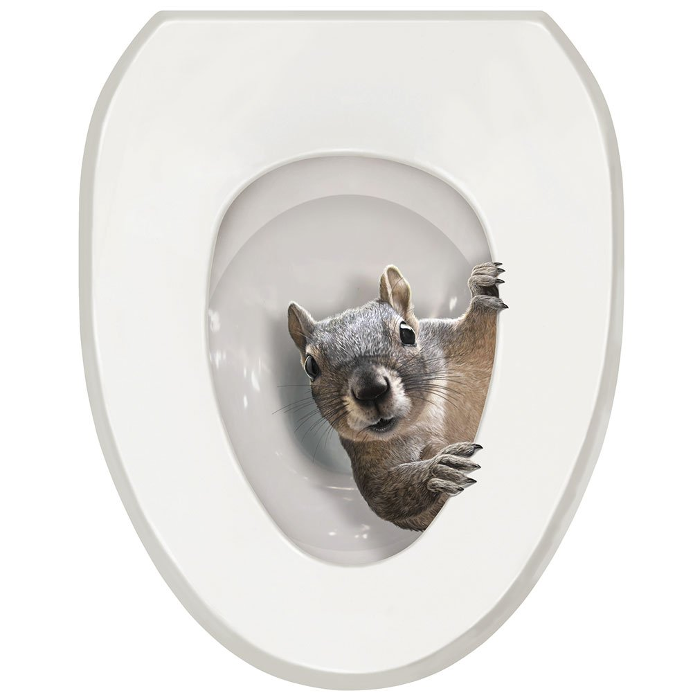 WHAT ON EARTH Exclusive It's a Squirrel! Toilet Seat Lid Tattoo Cover - Oval by WHAT ON EARTH