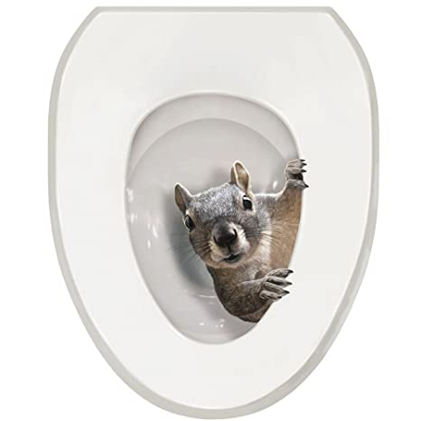 Outstanding What On Earth Exclusive Its A Squirrel Toilet Seat Lid Tattoo Cover Oval Caraccident5 Cool Chair Designs And Ideas Caraccident5Info