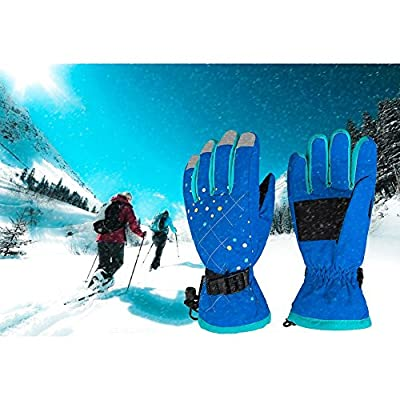 Waterfly Fashion Women's Femal Warm Waterproof Winter Outdoor Glove Cycling Gloves Biking Gloves Snowmobile Snowboard Ski Gloves Athletic Gloves Mittens