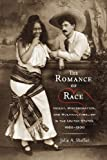 The Romance of Race : Incest, Miscegenation, and Multiculturalism in the United States, 1880-1930, Sheffer, Jolie A., 0813554624