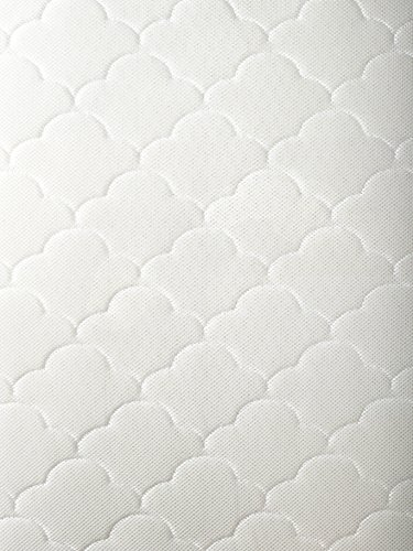 Newton Crib Mattress & Toddler Mattress: 100% Breathable, Washable, Recyclable made with...