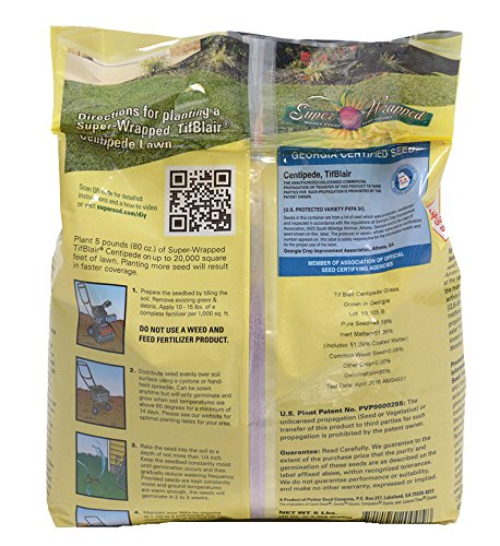 TifBlair Centipede Grass Seed (5 Lb.) Direct From the Farm by Patten Seed Company (Image #3)