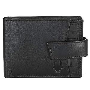 WildHorn Brown Men's Wallet