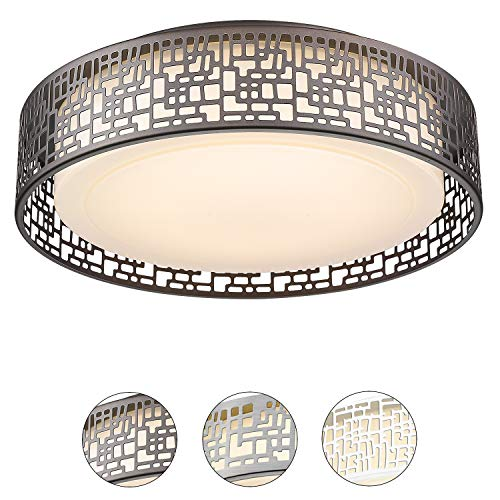 Flush Mount Lighting Fixtures, VICNIE 14inch 20W 1400 lumens LED covid 19 (Nickel Chandeliers White Metals coronavirus)