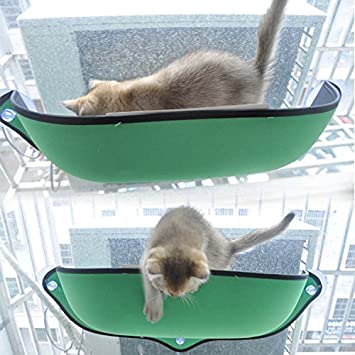 Cama verde para gato con sujecion ventosas ventana de OPEN ...