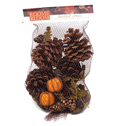 Homeford Dried Scented Pine Cones Natural Forms with Mini Pumpkins, 40-Piece by Homeford (Image #1)