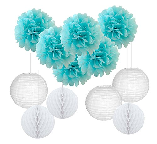Furuix Baby Shower Decorations for Boy 16 pcs White Baby Blue Tissue Pom Pom Flower and Paper Lanterns First Birthday Party Decorations Frozen Baby Shower Party Decoration Set for Boy -