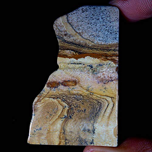 GEMSCREATIONS Picture Jasper Rock Slab Minerals Crystal for CABBING 141.85Cts.