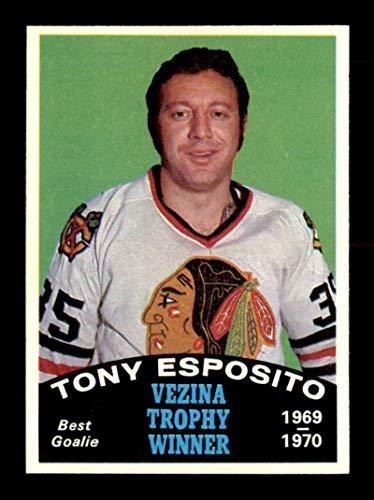 1970 O-Pee-Chee #250 Tony Esposito Vezina Trophy NM X1719220