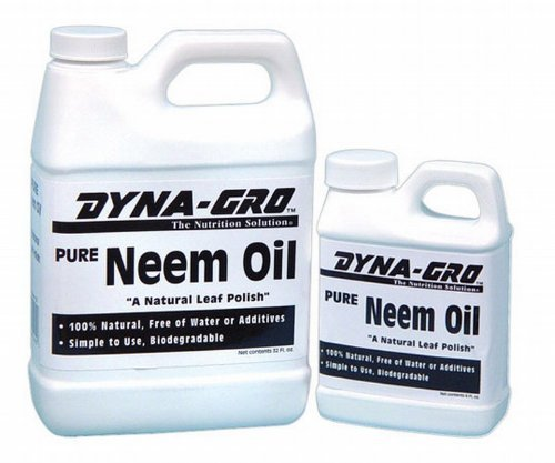 - Neem Oil Leaf Polish, Quart by Dyna-gro