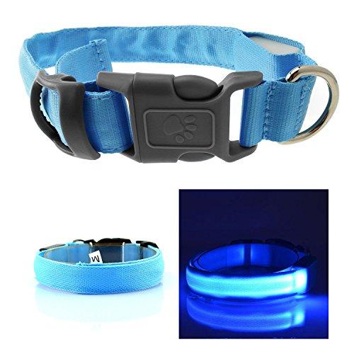 InnoLife Safety Collar circular Pendant
