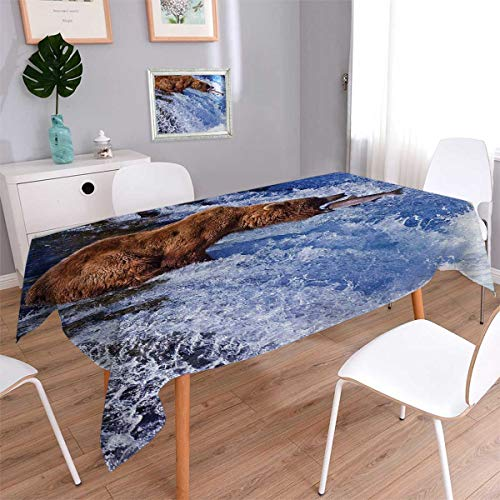 Anmaseven Nature Oblong Dinner Picnic Table Cloth Grizzly Bear at Katmai National Park Alaska Waterfall Catches Fish Wildlife Picture Waterproof Table Cover for Kitchen White Brown Size: W50 x L80 ()
