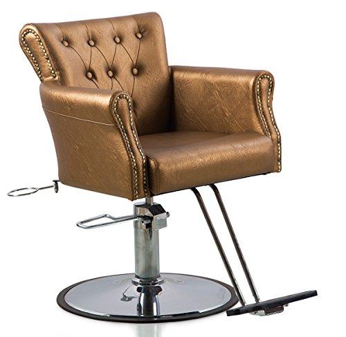 Hydraulic Styling Chair Set (Shengyu Gold Hydraulic Styling Barber Chair Hair Spa Beauty Salon Equipment)