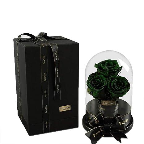 Amazon.com: CFJKN Beauty and The Beast Rose en cúpula de ...