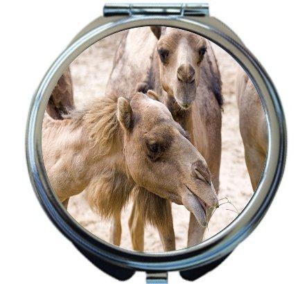 Rikki Knight Camels Smiling Together Design Round Compact Mirror by Rikki Knight