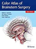 img - for Color Atlas of Brainstem Surgery book / textbook / text book
