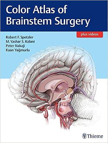 Color Atlas Of Brainstem Surgery 0001626230277 Medicine Health