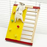 Small Animal Activity Toy Activity Hamster Gym Slide Wooden