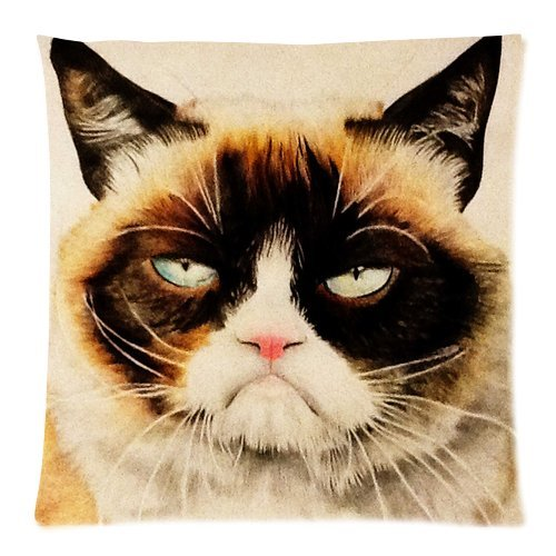 Home Decor Pillowcases Funny Grumpy Cat 18X18 Inch Two Sides Zippered Soft Cotton Pillow (Transformers 2 Alice)