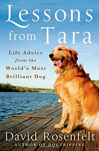 Lessons from Tara Life Advice from the Worlds Most Brilliant Dog