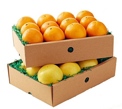 Florida Navel Oranges & Red Grapefruit- 2 trays (Indian River Fruit compare prices)