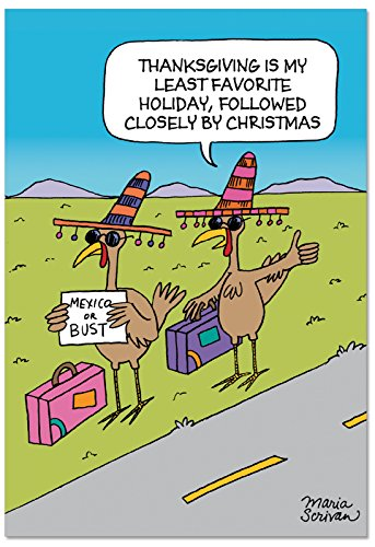 - 12 'Hitchhiking Turkeys' Boxed Christmas Cards 4.63 x 6.75 inch, Festive Turkey Holiday Notes, Funny Stationery for Christmas and Thanksgiving, Unique Christmas Stationery B2503HHG