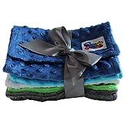Baby 5 Pack Minky Dot Burp Cloths (Choose Color) (Boys)