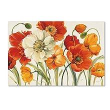 "Trademark Fine Art Poppies Melody I Wall Decor by Lisa Audit, 30"" x 47"""