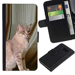 All Phone Most Case / Oferta Especial Cáscara Funda de cuero Monedero Cubierta de proteccion Caso / Wallet Case for Samsung Galaxy S6 // Savannah Serengeti Somali Mau Cat