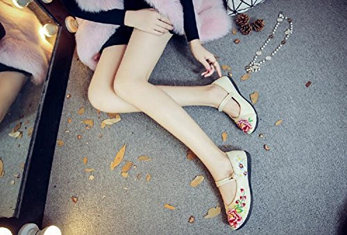 Lazutom Women Lady Vintage Chinese Style Canvas Embroidery Casual Mary Jane Flats Dress Shoes Beige m6DyHfa