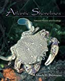 img - for Atlantic Shorelines: Natural History and Ecology by Mark D. Bertness (2006-11-05) book / textbook / text book