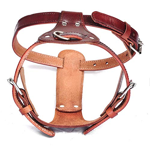 (Peshouco Leather Dog Harness No Pull Design Genuine Leather Durable Strong Pet Harness with Adjustable Straps Easy Control Pet Vest (L))