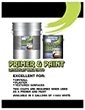 Diamond Brite Paint 11900-5 Flat Paint and Primer in One, 5-Gallon, White