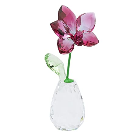 e2604075a Image Unavailable. Image not available for. Colour: Swarovski Crystal  Orchid Flower Dreams ...