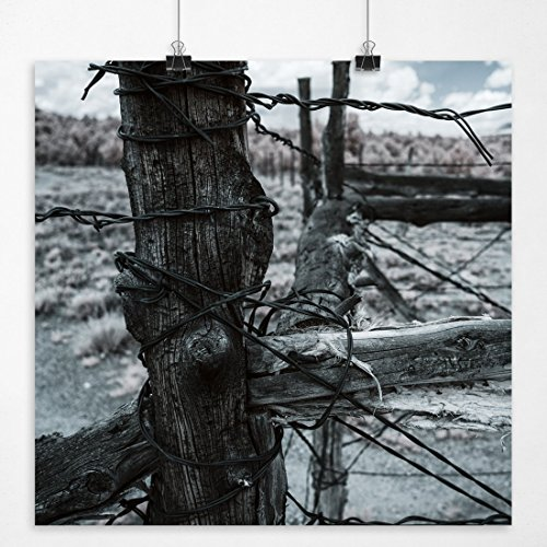 old barbed wire - 7