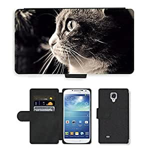 Super Stella Cell Phone Card Slot PU Leather Wallet Case // M00146738 Cat Cute Black And White Pet Kitten // Samsung Galaxy S4 S IV SIV i9500